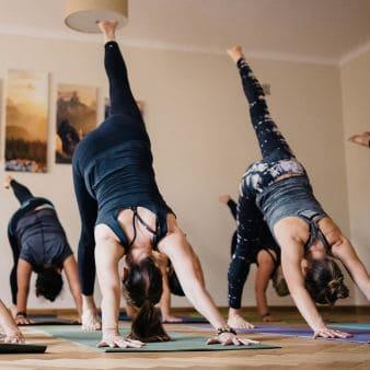 zajęcia jogi dla początkujących
